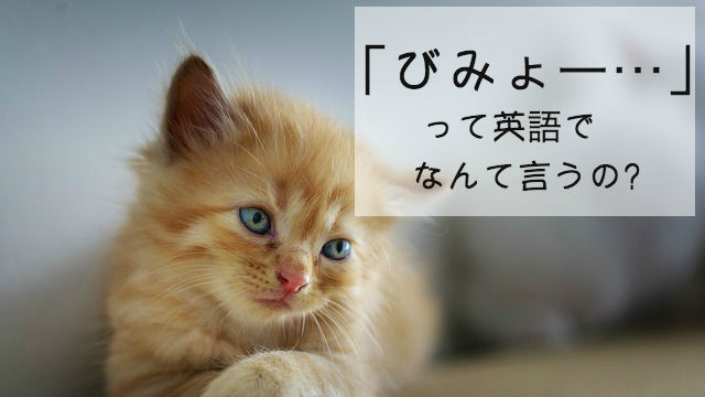 微妙って英語でなんて言うの?